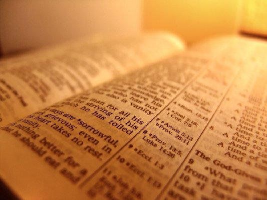 bible1 - NHỮNG KĨ NĂNG CẦN CÓ ĐỂ ĐẠT BAND 7+ CHO BÀI ĐỌC (P1)